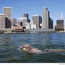 SF Bay Swimming city in background sfgate.com