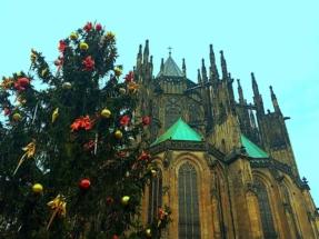 St Vitus and XMas Tree