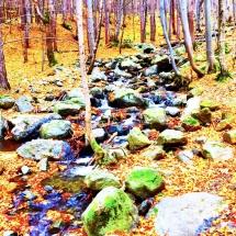 vitosha-hike-stream
