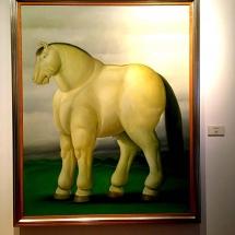 Boteros horse
