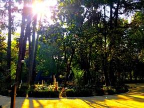 Parque Espana2