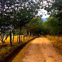 Suesca dirt road