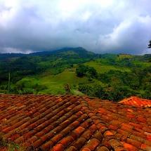 Jardin Coffee Plantations