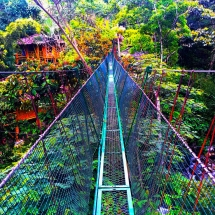 Tierra de Agua suspension bridge2