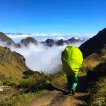 Porter above Cloud Forrest