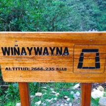 Winaywayna sign