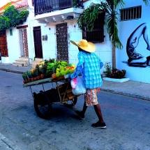 Cartagena Fruit Seller