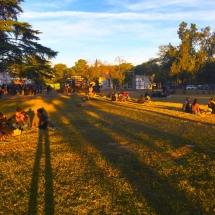 Merienda in the Park