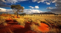 Namibia desert photo