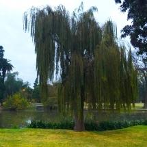 Sarmiento Parque Pond